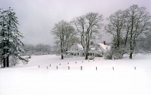Main Road farm in snow